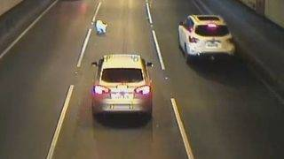 Drivers warned after dog falls out of moving car