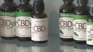 Healing with hemp: Local 10 investigates alternative medical