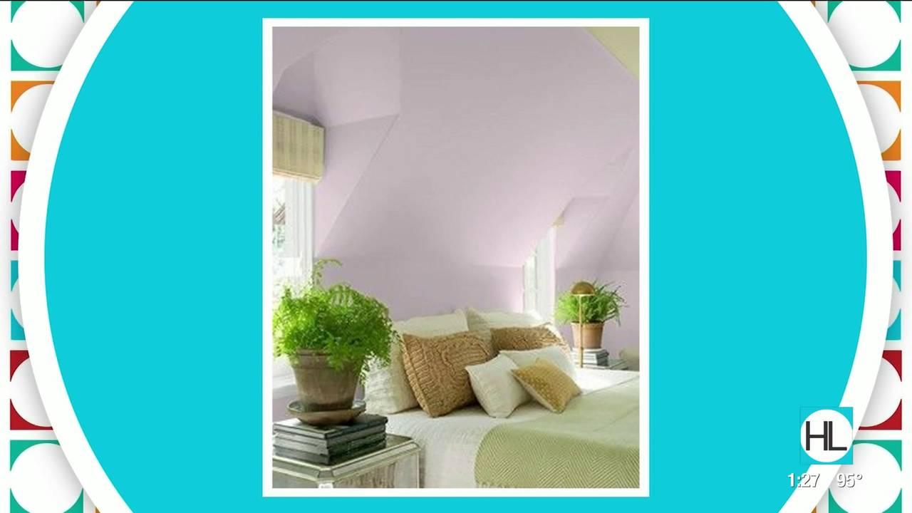 lavendar_1567728685769.jpg