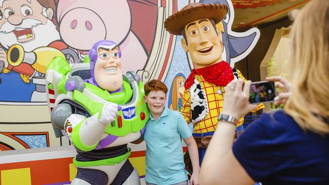 Toy Story Woody Buzz_1530815829590.jpg.jpg