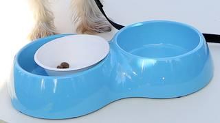 Hill's Pet Nutrition recalls more dog food over vitamin D levels concern