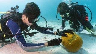 Weston teens claim top prize in Keys underwater pumpkin-carving contest