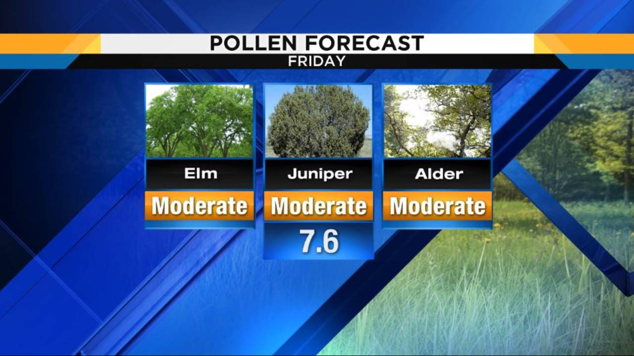 Warm, dry weather leads to early start to allergy season
