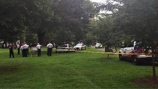 Over 20 people overdosed in Connecticut park in one day