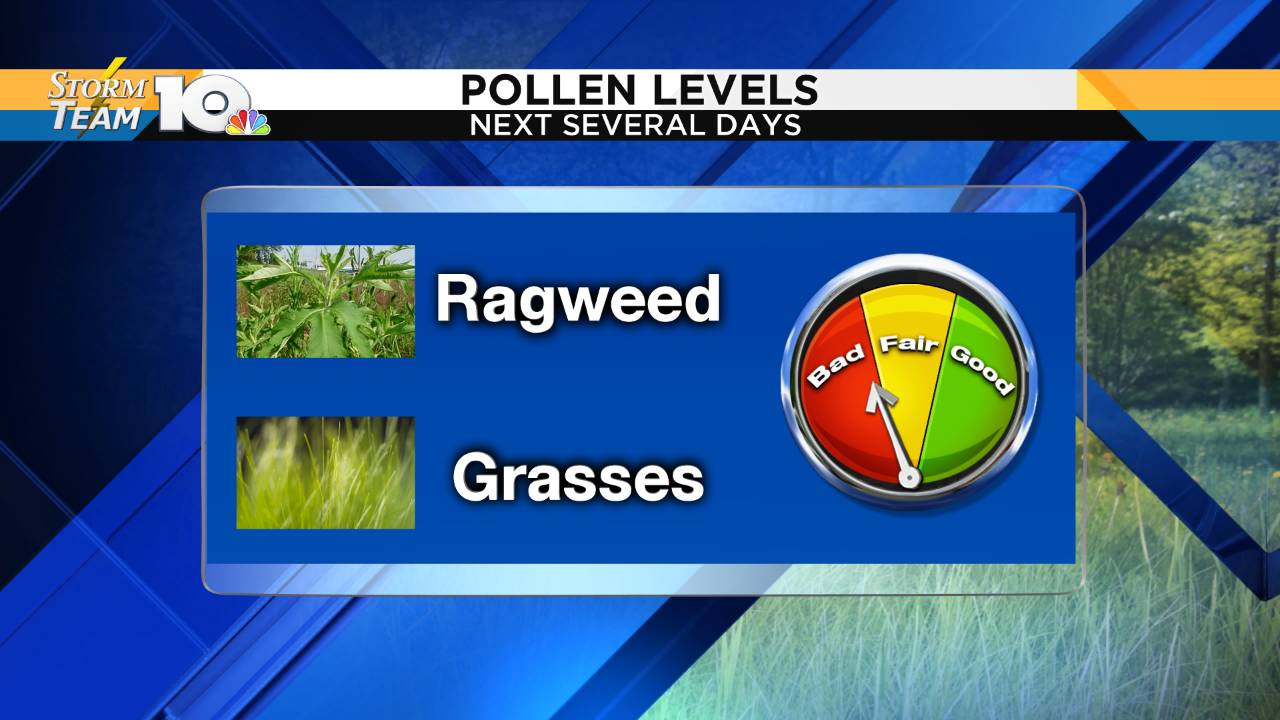Pollen Scale and Culprits_1565765252886.png.jpg