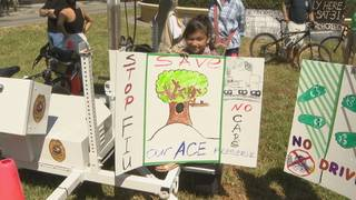 About 200 protest plans to build road through North Miami park