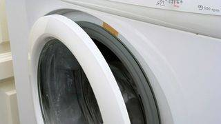 Cat gets stuck in washing machine, lives to tell the tale