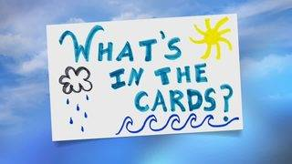 What's in the cards?!?