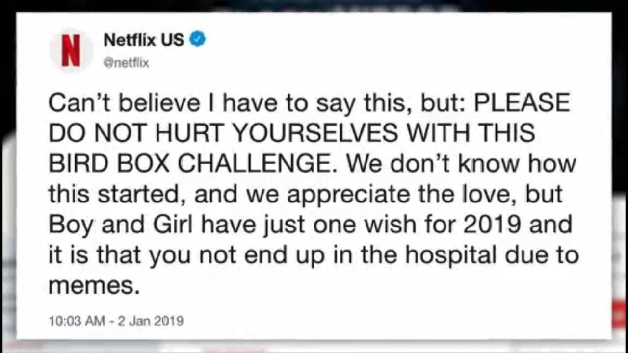 Netflix Warns Against Doing Bird Box Meme Challenge