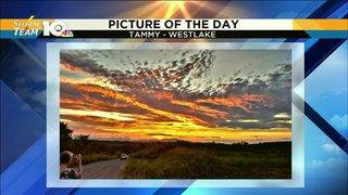 Picture of the Day | WSLS 10