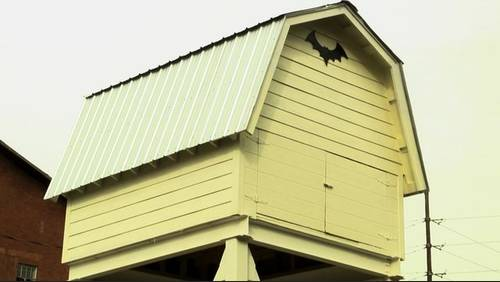 Texas agency trying to lure bat colony to new address