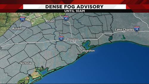 Dense fog causing serious issues for commuters