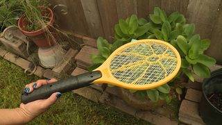 Can a $6 bug zapper control flying pests?