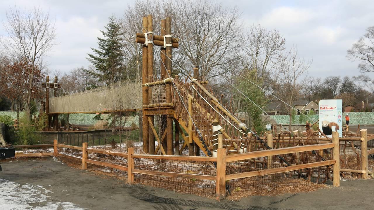 Rope Bridge 2 - Jennie Miller_1544459330674.JPG.jpg