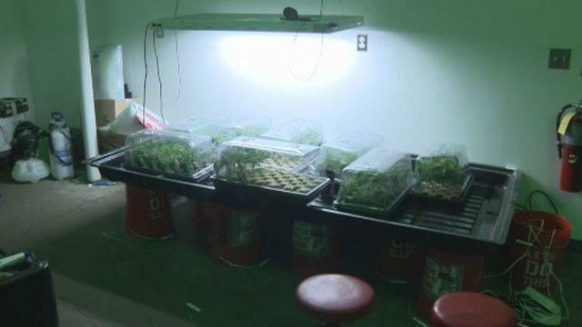 Detroit million-dollar marijuana bust 5