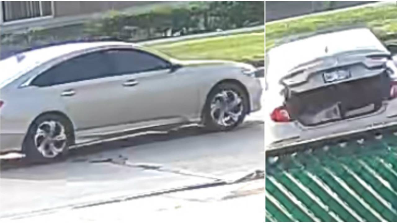Roseville lawn equipment thieves images 4
