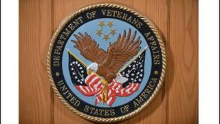 Investigation launched into how Shulkin staffer got top VA hospital job