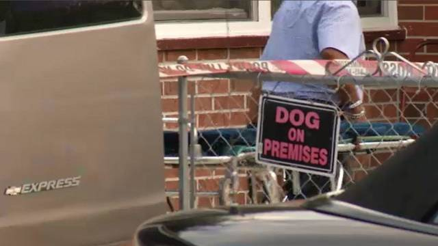 Dog on premises sign at Jessie Street home