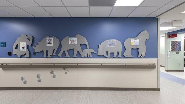 Beaumont Hospital Royal Oak opens new Pediatric Emergency Center 10_1531407344947.jpg.jpg