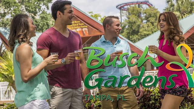 Free beer returns to Busch Gardens this summer