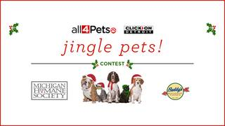 All 4 Pets: Jingle Pets contest - Win a year's worth of Buddy's pizza