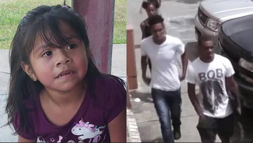 Robbers threaten 4-year-old girl with gun during home invasion, police say