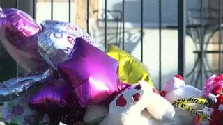 Dozens take action after 8-year-old girl killed crossing road