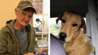 Man's beloved hunting dog shoots him in the back