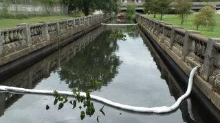 Cleanup underway on Hogan's Creek after massive jet fuel spill