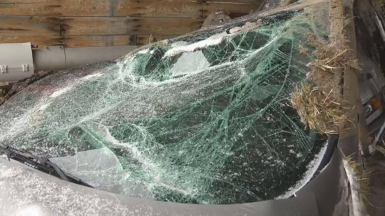 Livingston County deputy hurt road rage driver minivan