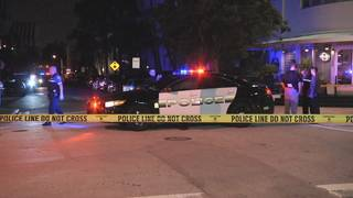 Tourist dies after hit-and-run crash in Miami Beach, police say