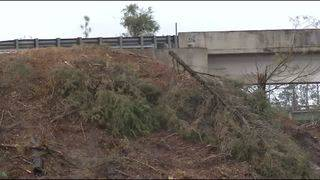Georgia DOT removing trees to improve traffic safety