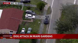 Man bitten by dog in Miami Gardens, officials say