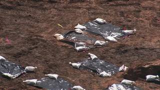 Fort Bend ISD halts legal actions related to 95 graves found