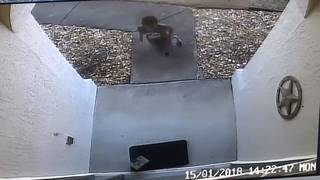 'They're teaching a kid to steal:' Boy snatches package from Deltona home