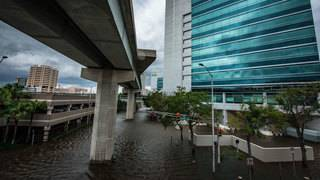 Florida regulators to review utilities' hurricane plans