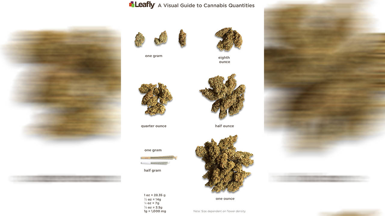 guide to quantity of weed