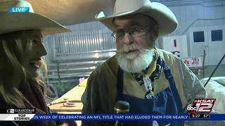 KSAT 12's Sarah Spivey interviews cook at San Antonio Stock Show & Rodeo