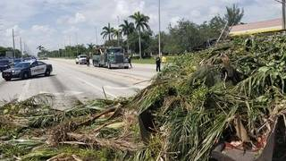 Landscaping truck overturns, spilling debris in Deerfield Beach