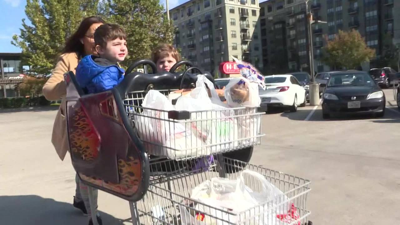kids in grocery cart generic