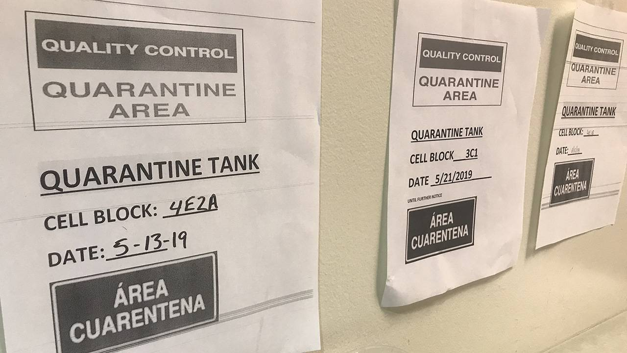 harris county jail mumps outbreak quarantine signs