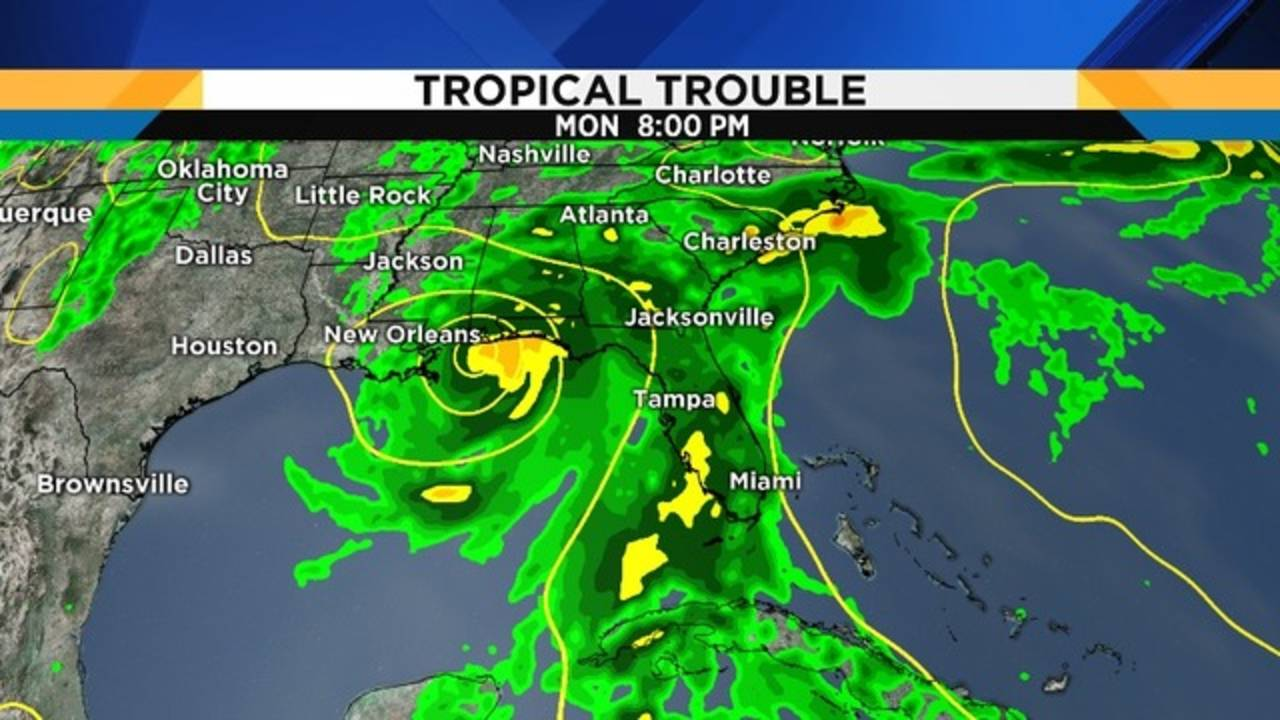 Tropical Trouble_1527277232023.png.jpg
