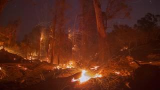 California fire: Resident says neighborhood looks like 'war zone'