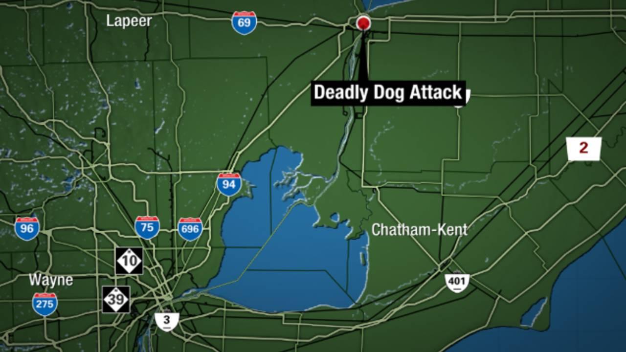 Port Huron dog attack map