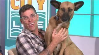 Steve-O and his precious Peruvian pup stop by River City Live