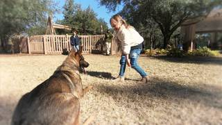 6-year-old joins mission with her mom to save police K-9s