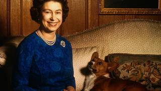Last in Queen's line of corgis dies, says British press