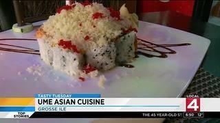 Tasty Tuesday: Ume Asian Cuisine