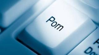 Florida Legislature may declare pornography a health risk