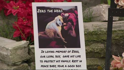 Dog dies protecting family during birthday party shooting